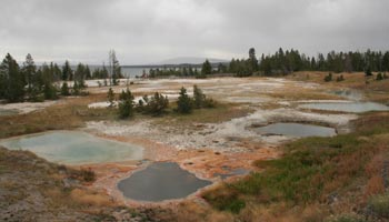 West Thumb Geyser Basin - Yellowstone