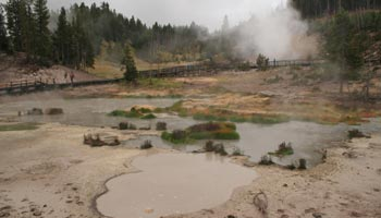 Mud Volcano Area - Yellowstone
