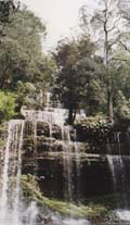 Russell Falls im Mount Field National Park